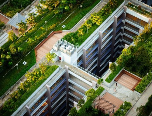 Using XPS Foam to Insulate Inverted Green Roofs